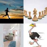 4 Bilder 1 Wort 6 Buchstaben LÄUFER